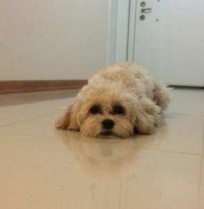 Sad baby Ted